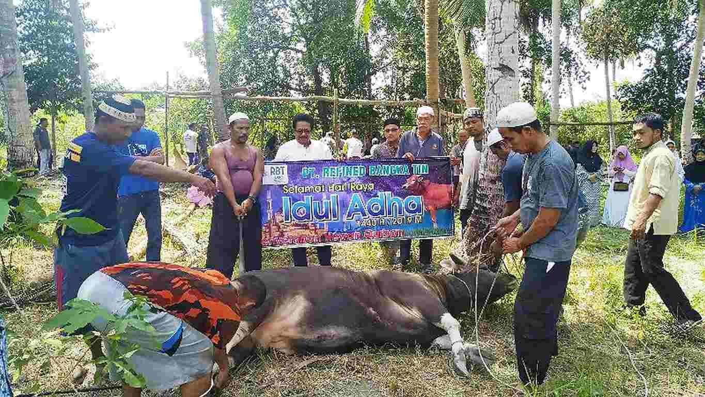2019, PT RBT Salurkan 44 Hewan Kurban Ke Seluruh Wilayah di Bangka Belitung